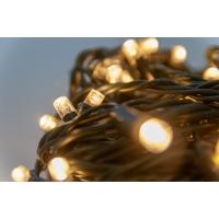 100 Lumières del, blanc chaud sur fil vert, extérieur