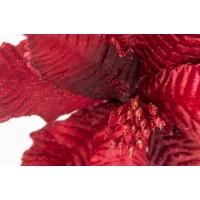 Poinsettia en velours bourgogne