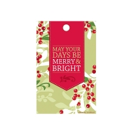5 hanging scented sachets  merry memory