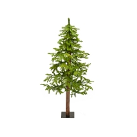 Illuminated 4' Fresh Cut Alpine  Tree