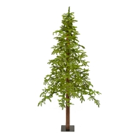 Illuminated 6' Fresh Cut Alpine  Tree