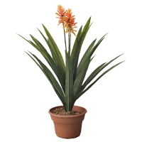 Artificial plant, 33'' aechmea
