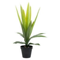 Plante artificielle, agave 24''