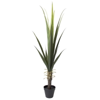 Plante artificielle, agave 5'