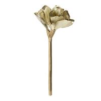 Gold metallic amaryllis stem, 18''
