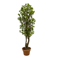 5' Artificial tree, aralia parsley