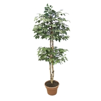 6' Artificial tree, cherry tree