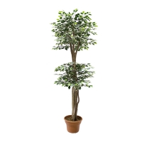 6' Artificial tree, Green & white ficus