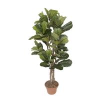 5' Artificial Ficus lyrata