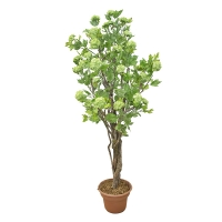 6' Artificial tree, hydrangea with green flowers