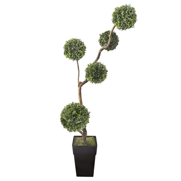 arbre boule de buis 6 5 39 d cors v ronneau. Black Bedroom Furniture Sets. Home Design Ideas