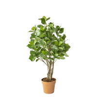 Artificial clusia tree, 3'