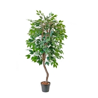 Artificial Green Ficus, 5'