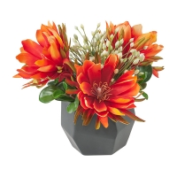 Bright Cactus Flower Arrangement