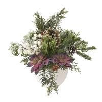 Arrangement hivernal de plantes grasses et sapinage 16 x 13'