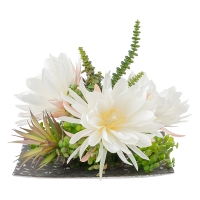 White Cactus Flower Arrangement