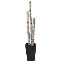 6' Illuminated birch arrangement