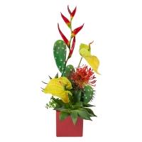 Colorful Cactus Arrangement
