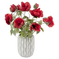 Red Poppies in Modern White Vase