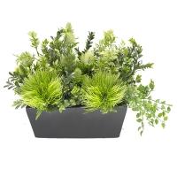 Arrangement de verdure en pot