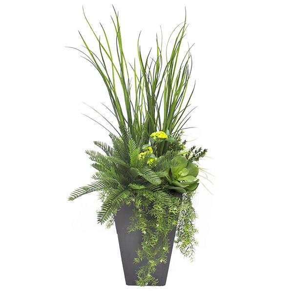 arrangement de verdure et plantes grasses pot noir d cors v ronneau. Black Bedroom Furniture Sets. Home Design Ideas