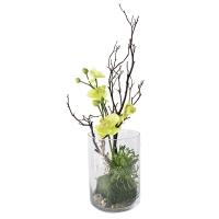 Arrangement d'orchidées et branches