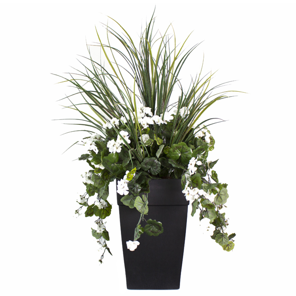Arrangement ext rieur 40 39 39 de dracaena et g raniums blancs for Plant de pot exterieur