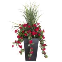 Arrangement extérieur 40'' de dracaena et géraniums rouges