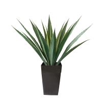 53'' outdoor americana agave planter