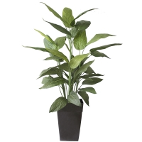 70'' outdoor canna planter