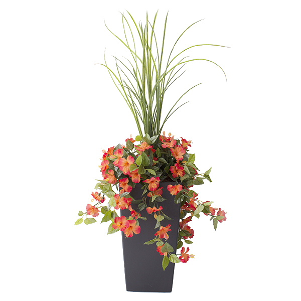Jardini re en pot hibiscus orange 40 39 39 d cors v ronneau for Arrangement floral exterieur