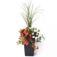 40'' Outdoor orange & white hibiscus planter
