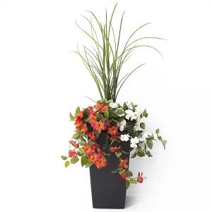 Jardinière en pot, hibiscus orange et blancs 40''