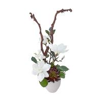 Arrangement, magnolias et plantes grasses
