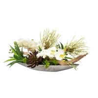 Arrangement, orchidée et bois