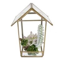Petite maison de plantes grasses 9,5''