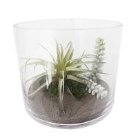 Terrarium en vase