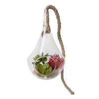 Fleur et plantes grasses en vase