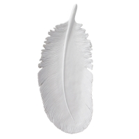 White feather plate, 6 x 1.5 x 14''