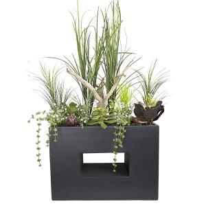 Bac moderne avec verdures, plantes grasses et bois