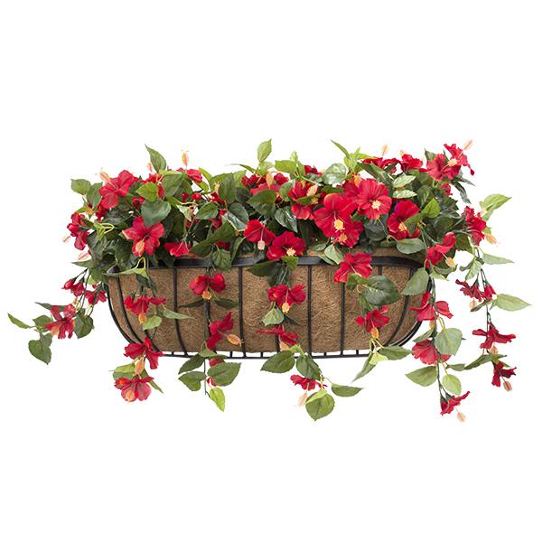 Balconni re d 39 hibiscus rouges 28 39 39 d cors v ronneau for Hibiscus exterieur rouge