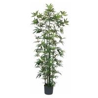 Bamboo tree, 70''