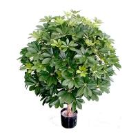 Plante artificielle, schefflera 3'