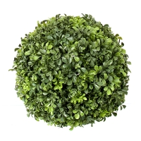 13'' Round English Boxwood