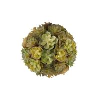 Boule de plante grasse verte et bourgogne 3''
