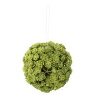 Boule plantes grasses vertes 5,5''