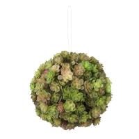 Boule plantes grasses vertes et brune 5,5''
