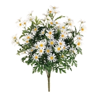 White Daisy Bouquet, 24''