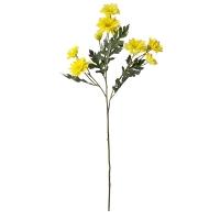 Bouquet de marguerites jaunes 25''