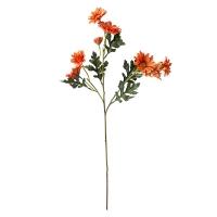 Bouquet de marguerites orange 25''